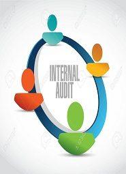 Internal Audits and Management Assurance
